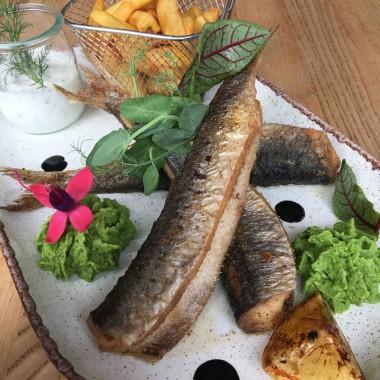 Ryba - Śledzie